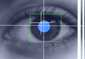 Eye-tracking how users read on the web